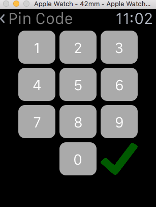Image of Pin Code screen in watch app